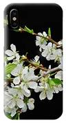 Apple Blossoms 2 IPhone X Case