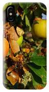 Apple Tree IPhone Case