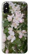 Apple Tree In Bloom IPhone Case