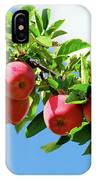 Apples On A Branch IPhone X Case