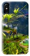 Aquarium Striped Fishes Group IPhone Case