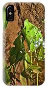 Aquatic Arrowhead In Iguazu Falls National Park-argentina  IPhone Case