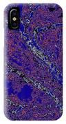 Arboreal Plateau 34 IPhone Case