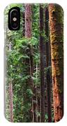Arcata Forest IPhone Case
