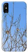 Arctic Buntings IPhone Case