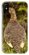 Arctic Willow Ptarmigan IPhone Case