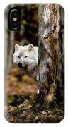 Arctic Wolf In Forest IPhone Case