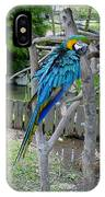 Arent I A Handsome Fellow - Blue And Gold Macaw IPhone Case