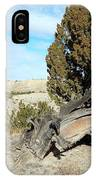 Arid Beauty IPhone Case