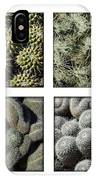 Arizona Cacti  IPhone Case