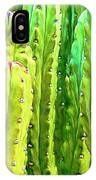 Arizona Cactus #16 IPhone Case