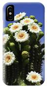 Arizona State Flower- The Saguaro Cactus Flower IPhone Case