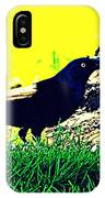 Art Deco Grackle IPhone Case