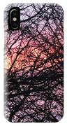 Art Inspired Nature IPhone Case