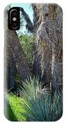 Arthur B Ripley Desert Woodland State Park IPhone Case