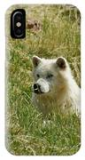 Artic Wolf 2 Dry Brushed IPhone Case