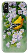 American Goldfinches And Apple Blossoms IPhone Case