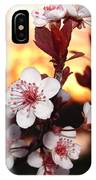 As The Sun Sets IPhone Case