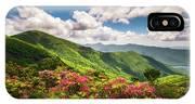Asheville Nc Blue Ridge Parkway Spring Flowers Scenic Landscape IPhone X Case