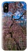 Asian Cherry In Blossom IPhone Case