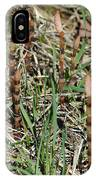 Asparagus In The Wild IPhone Case