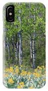 Aspen And Balsam Root IPhone Case