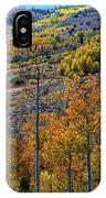 Aspen Cascades In The Sierra IPhone Case
