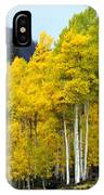 Aspen Fall IPhone Case