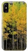 Aspen Haven  IPhone Case by Ron Cline