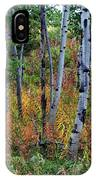 Aspen In Fall IPhone Case