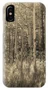 Aspen Light IPhone Case