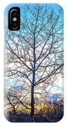 Aspen Tree At Sunset IPhone Case
