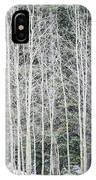 Aspen Trees IPhone Case