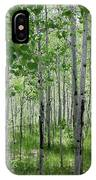 Aspen Trees Colorado IPhone Case
