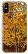 Aspen Trees With Autumn Leaves  IPhone Case