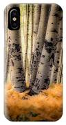 Aspen Trees With Ferns IPhone Case
