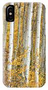 Aspen With Fall Color IPhone Case
