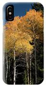 Aspens And Sky IPhone Case