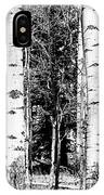 Aspens And The Pine Black And White Fine Art Print IPhone Case