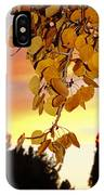 Aspens At Sunset IPhone Case