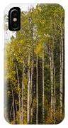 Aspens In Autumn IPhone Case