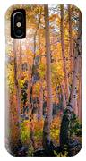 Aspens In Fall Color IPhone Case