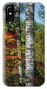 Aspens In Fall Forest IPhone X Case