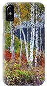 Aspens Meet Autumn IPhone Case