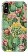 Assorted Blooming Cactus Plants IPhone Case