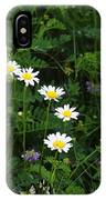 Aster And Daisies IPhone Case