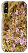 Asters In Autumn IPhone Case