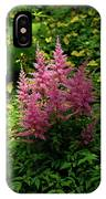 Astillbe In Light And Shadow IPhone Case