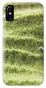 Auckland Sheep Grazing IPhone Case
