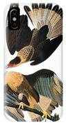 Audubon: Caracara, 1827-38 IPhone Case